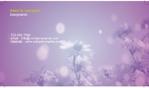 white_blossom