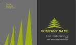 Finance-Business-card-2